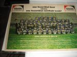 1966 Buffalo Bills (AFL) Large Size Color Team Panoramic Photo Sponsored by Schmidts Beer